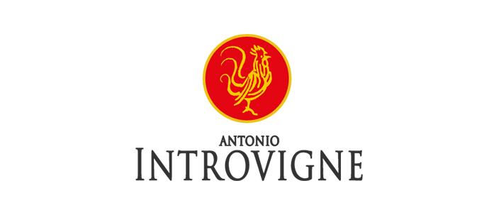 introvigne